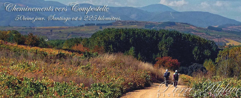 Cheminements vers Compostelle