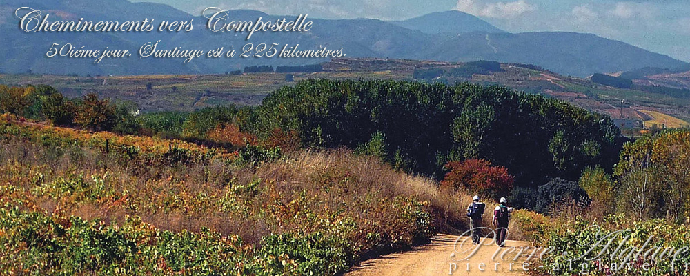 Cheminements vers Compostelle : livre, ebook