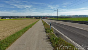 Piste cyclable vers Chavornay