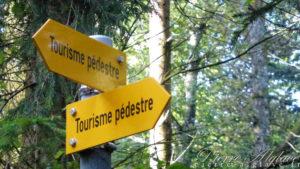 Tourisme pédestre