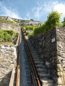 Escaliers dans les vignes