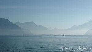 Les bords du Lac - Vevey