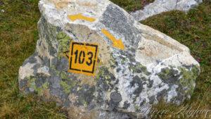 Le 103 : la via Francigena