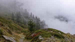 Descente dans la brume