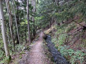 Chemin le long des canaux d'irrigation