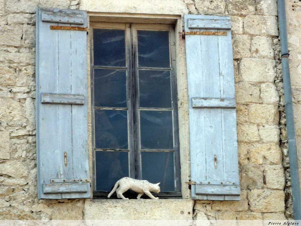 La Romieu, Angéline, la légende des chats