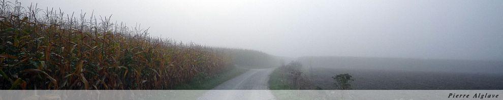 Le chemin dans la brume