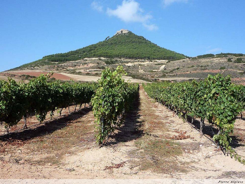 Aux environs de Villamayor de Monjardin