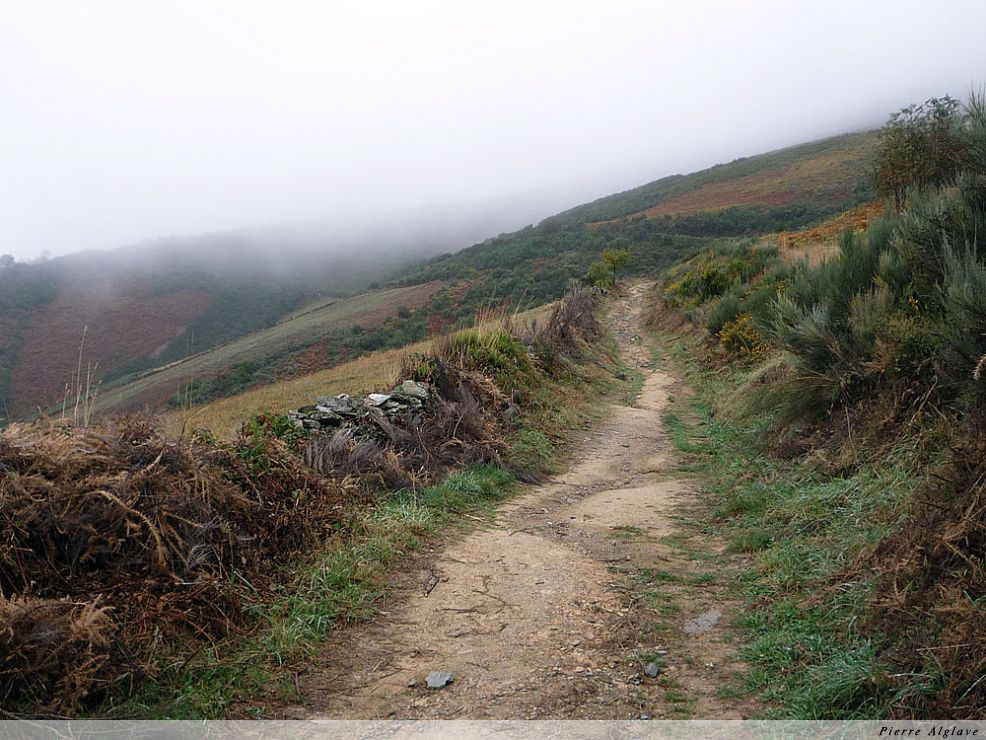 Le chemin vers O Cebreiro