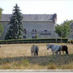 Abbaye de l\'Ouye