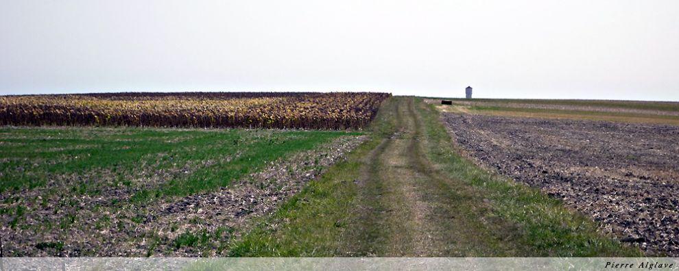 Sur le Chemin