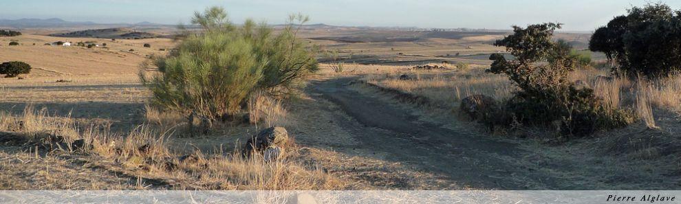 Via de la Plata - vers Zafra