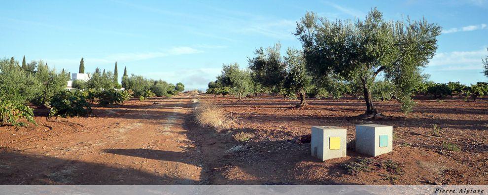 Le Chemin se sépare de la voie romaine