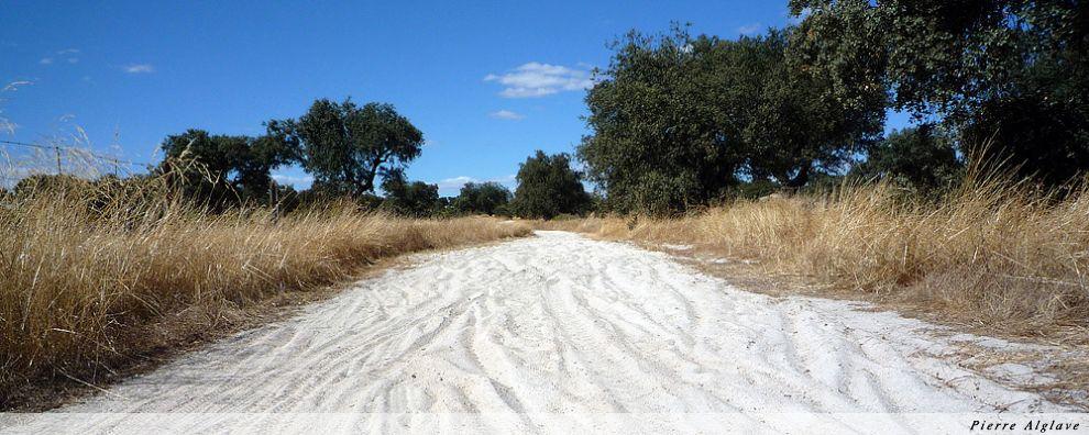 Chemin sablonneux
