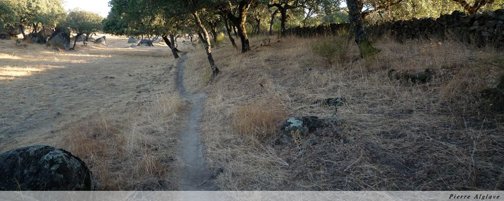 Murets, vestiges de la voie romaine