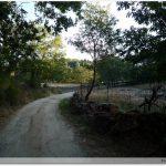 Le chemin après le col de Bejar