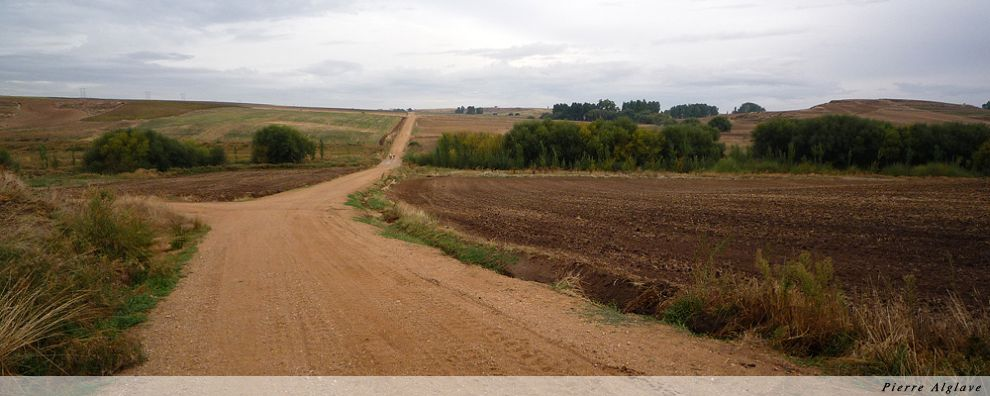 Le Chemin - Le cycliste et la marcheuse