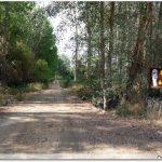 Le chemin au départ de Santa Marta de Tera