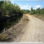 Le Chemin sur les bords du canal d`irrigation